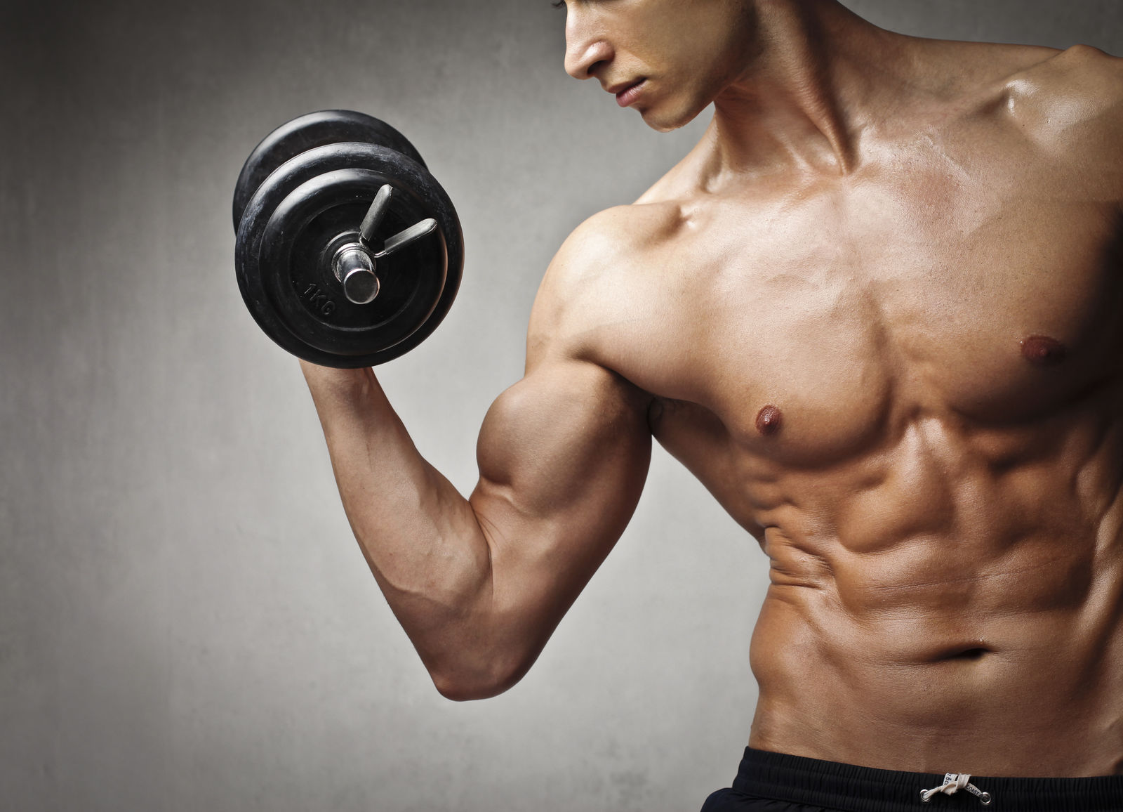 What are the major muscle groups for weight training?