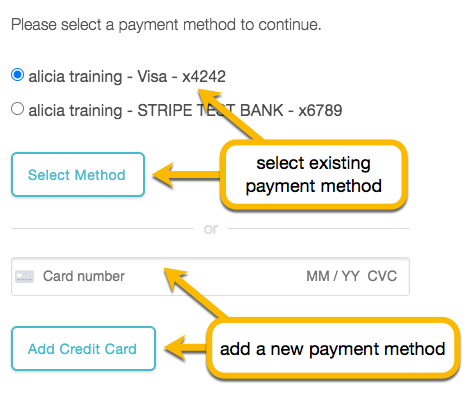 select payment